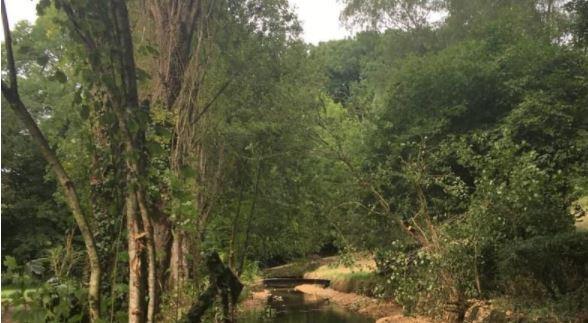 Lavausseau : travaux hydromorphologiques sur la Boivre
